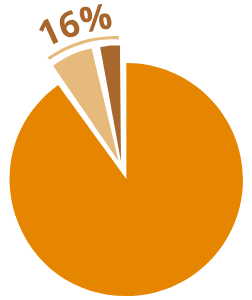16 pie chart exploded